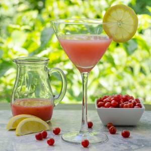 Goumi Berry Martini