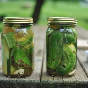 Garlic Dill Refrigerator Pickles