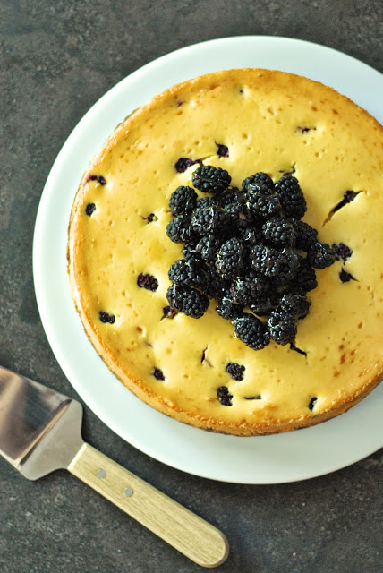 Honey and Blackberry Cheesecake with Gingersnap Crust